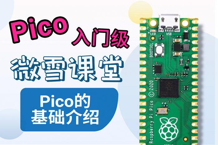 【Pico入门级教程】1. Pico的基础介绍